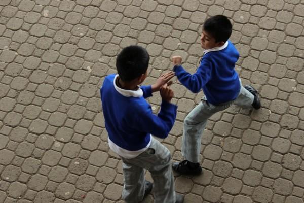 Por decreto, Veracruz castigará penalmente a jóvenes de entre 12 y 18 años que cometan bullying