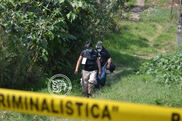 Se hallaron 4 cuerpos en fosas de Úrsulo Galván durante 2019: FGE