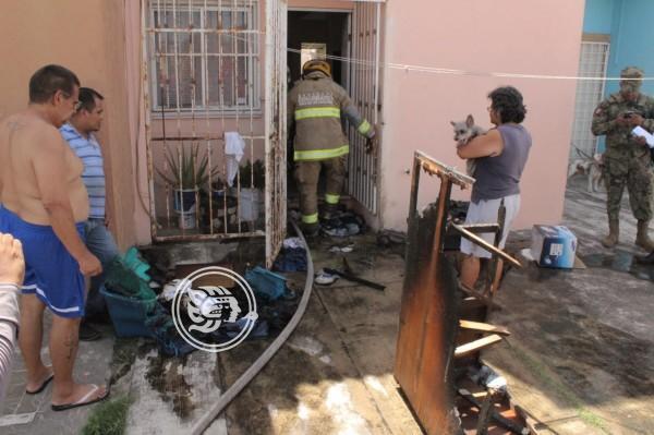 Bomberos salvan de las llamas a una camada de perros en Veracruz