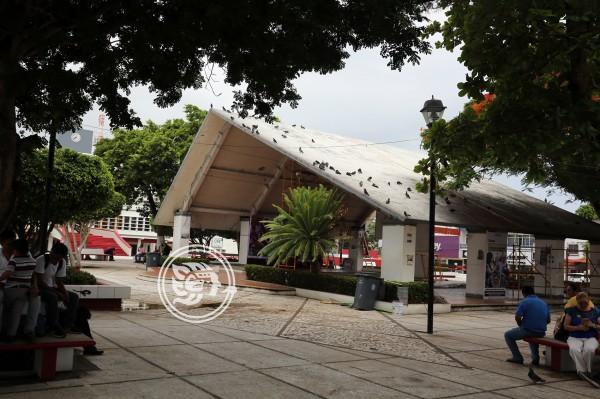 Durante festejos, despejarán parque Independencia de comerciantes