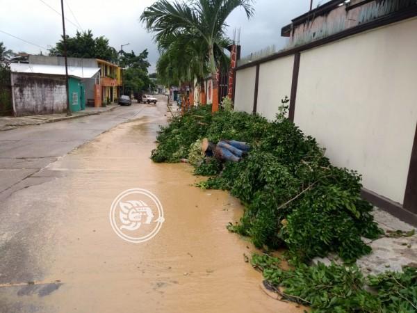 Lluvias causan primeros estragos en Minatitlán
