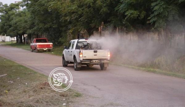 Piden atención en San Juan por casos de dengue