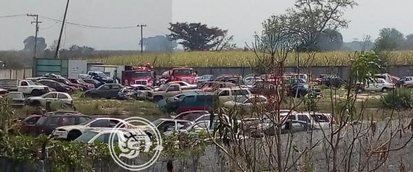 Buscarían terreno para habilitar corralón en Poza Rica