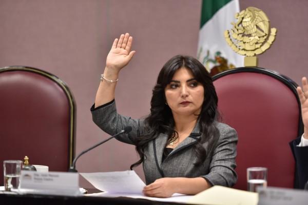 Propone Erika Ayala comparecencia de titular de la CEAPP