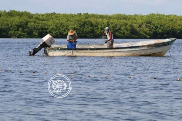 Pescadores tuxpeños han padecido un complicado 2019
