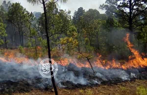 Exhorta PC en Minatitlán a evitar quema de basura