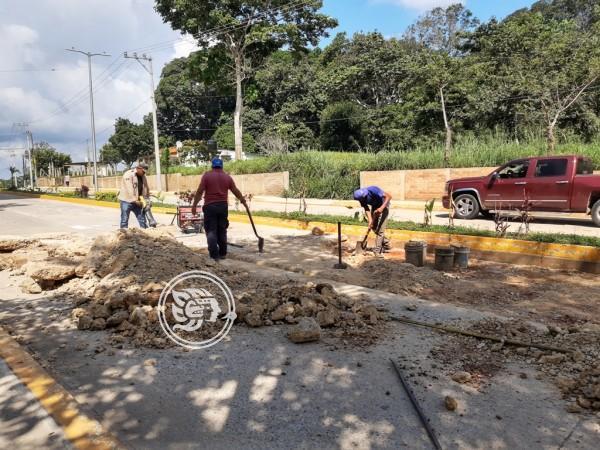 A un año de su inauguración, boulevard de Oluta presenta daños