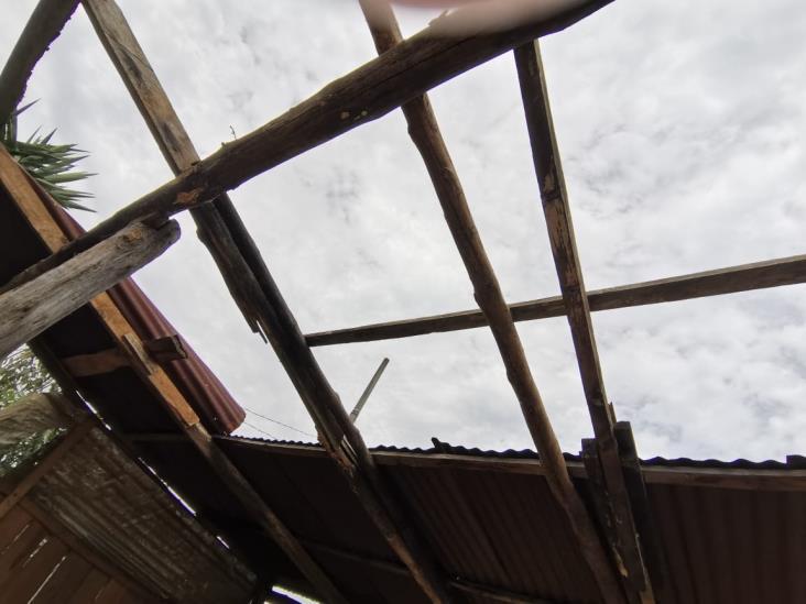 SPC no dará apoyo tras daños por surada en Zongolica