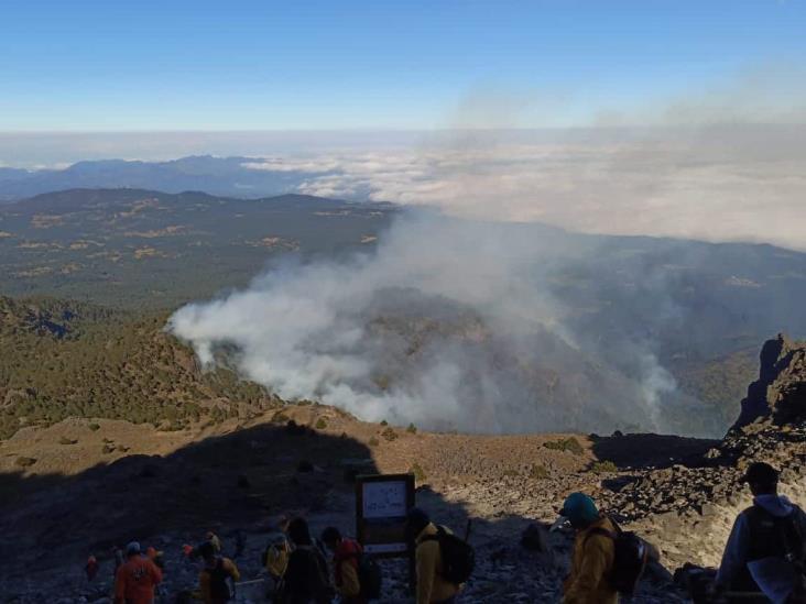 Liquidan fuego en Cofre de Perote; devoró 44 hectáreas de bosque de pino