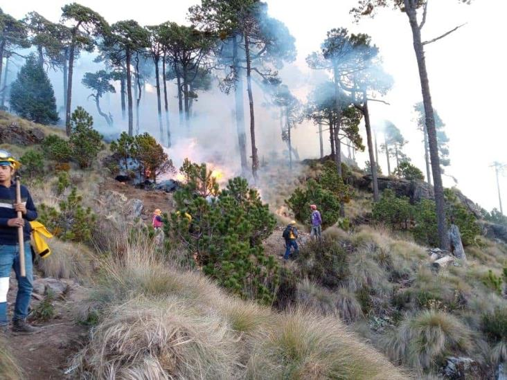 Incendio en el Cofre de Perote, controlado en 90%
