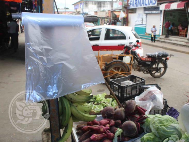 En un año, negocios de Xalapa dejarán bolsas de plástico: Canaco