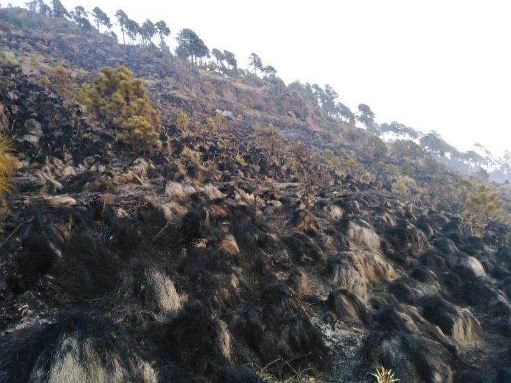Fogata pudo causar incendio en Cofre de Perote, advierte PC