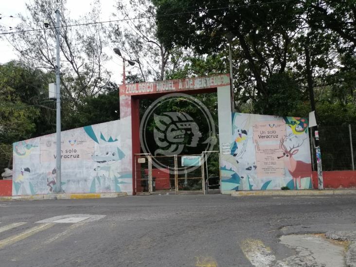 Zoológico de Veracruz debe ser cerrado a la brevedad