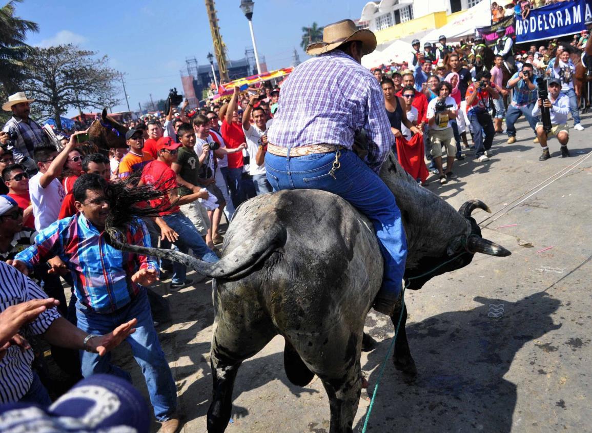 Habrá sanciones por maltrato animal durante Fiestas de la Candelaria