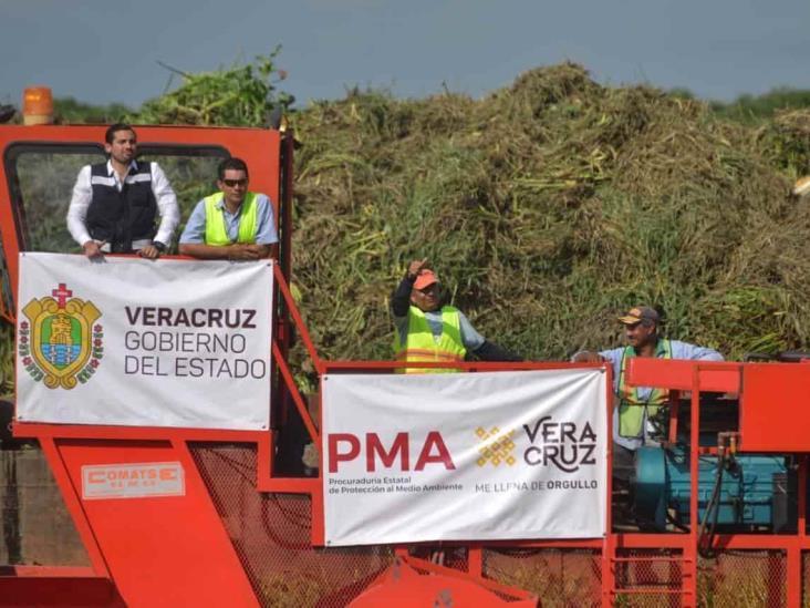 Inicia PMA limpieza de cuerpos de agua en el sur de Veracruz