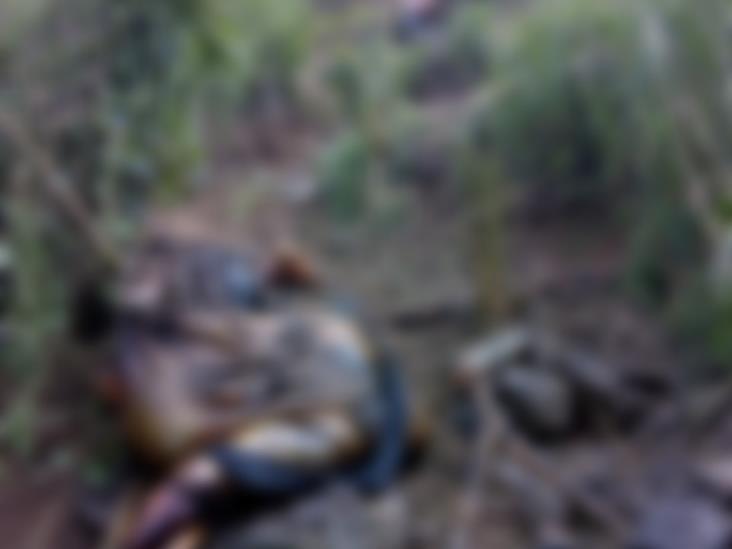 Hallan 2 cuerpos en descomposición en Alto Lucero