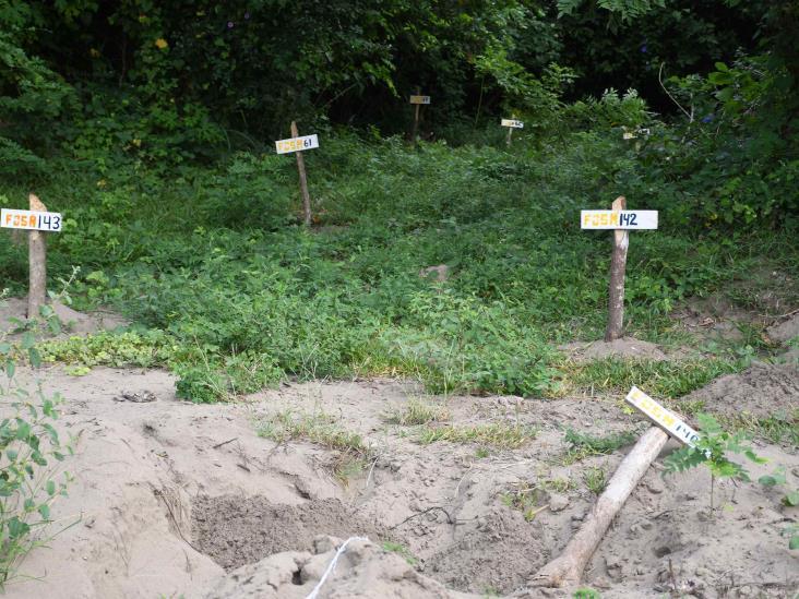 Crecen casos de desaparecidos en Veracruz