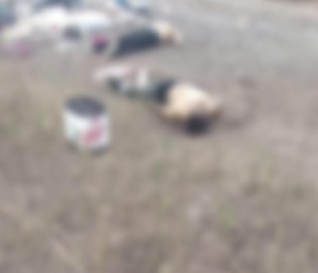 Ejecutan a 2 hombres y los abandonan basurero de Cotaxtla