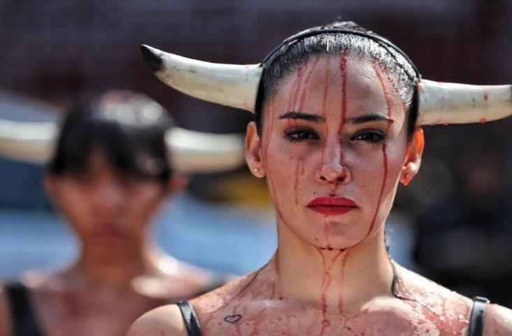 Activistas truenan contra tauromaquia; piden replicar a municipios de Veracruz