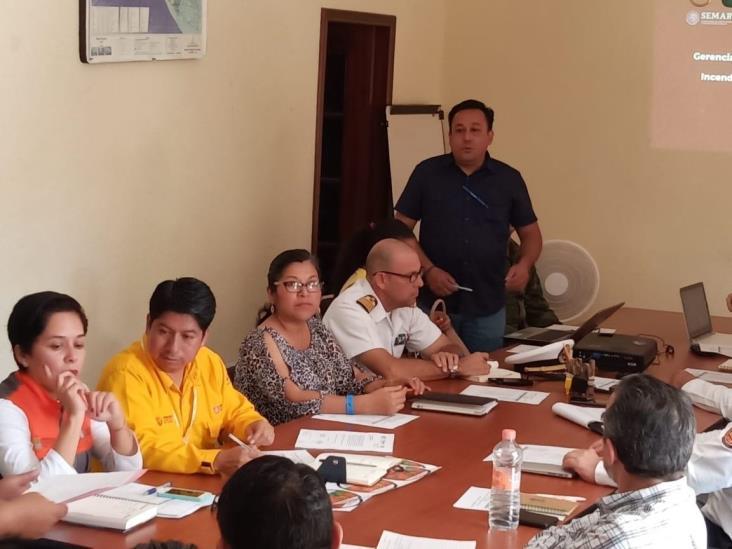 Veracruz, Chiapas y Oaxaca se unen contra incendios forestales