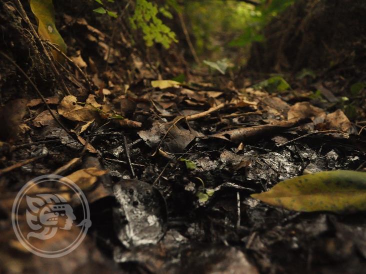 Reportan nueva fuga de hidrocarburo en Coatzintla