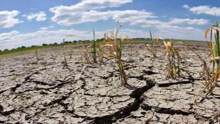 Implementa Sader acciones para contrarrestar sequía en México