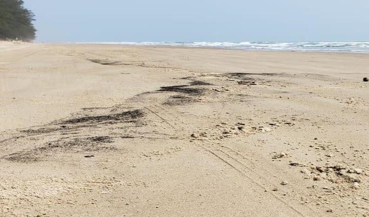 Pone Gobierno de Veracruz bajo lupa derrame en playas de Tuxpan