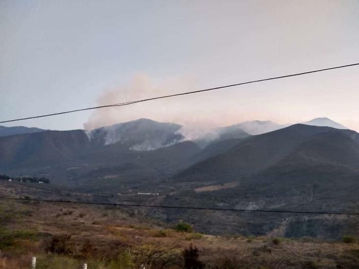 Incendio con afectaciones de casi 60 hectáreas en Acultzingo