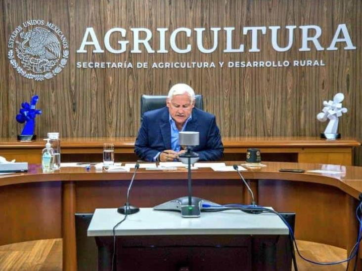 Sader, FAO y BID analizan retos alimentarios ante Covid-19