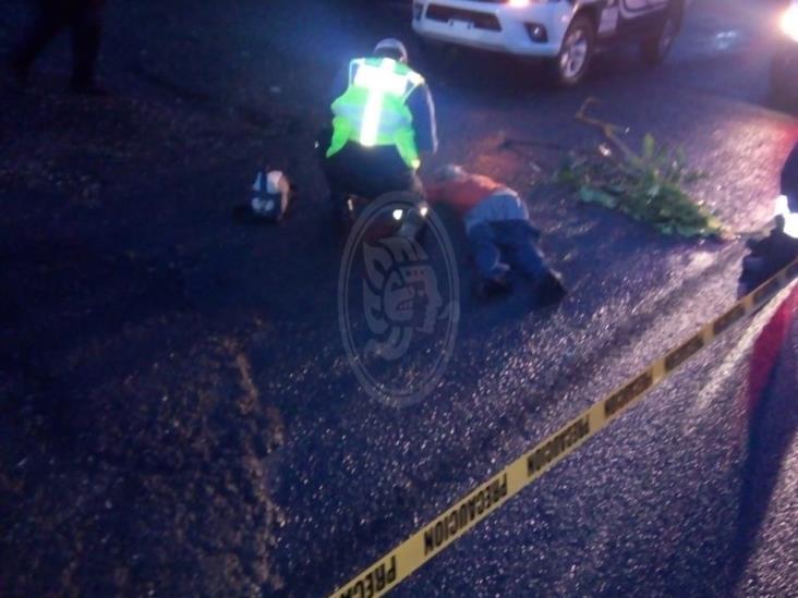 Sujeto es atropellado en la carretera federal Córdoba- Veracruz