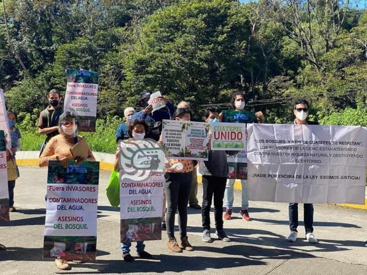 Mano negra del Poder Judicial favorece devastación de bosque en Veracruz