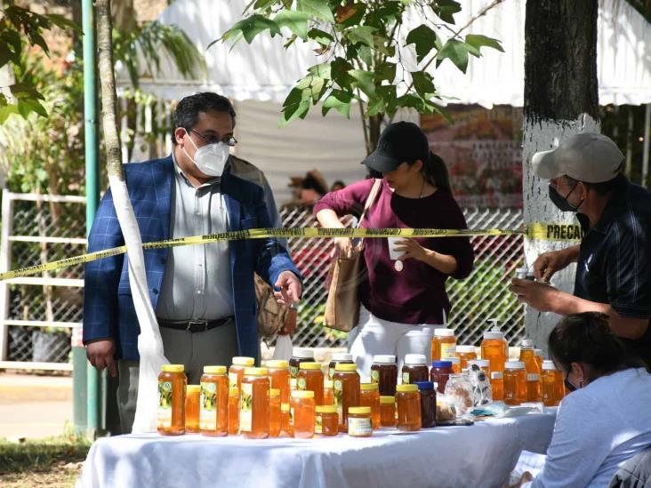 Busca Sedarpa combatir 'coyotaje'; realizan venta de aguacate en Xalapa