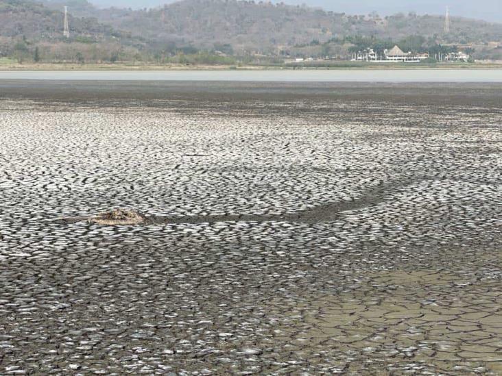 Alertas sobre saqueo a Laguna El Farallón, con años sin ser atendidas