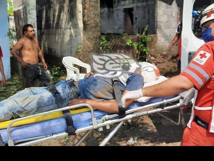 Cayó mientras desramaba árbol en Veracruz